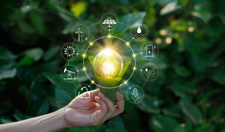 Como ser sustentável ao abrir um novo negócio - Universe Empresarial